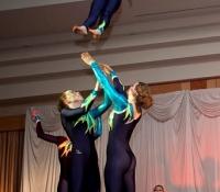 Display Team Jan 2012, NW Hospice Gala Concert